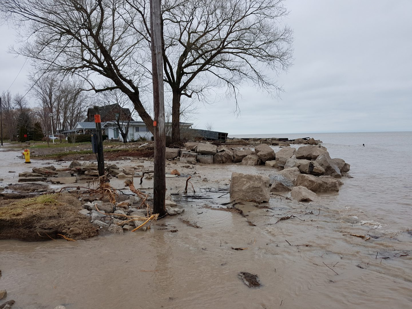Flooded area near lakeshore, rocks and branches thrown about