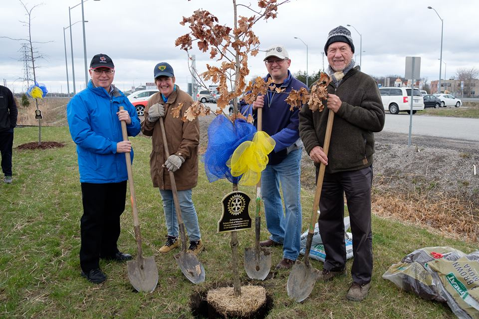 Rotary members posing in front of planted tree