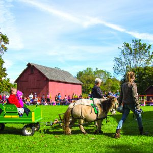 Ponies pulling a wagon with children sitting inside it.