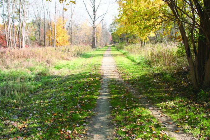 A photograph of the Chrysler Canada Greenway in the early fall