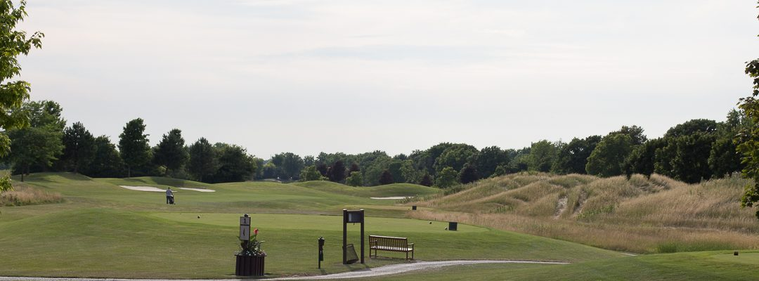 Gold Course panorama