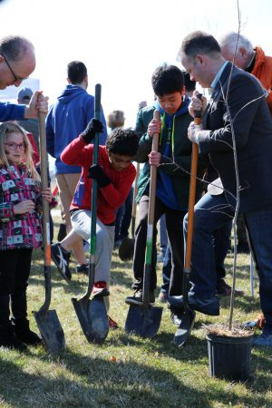 children digging holes for trees with shovels