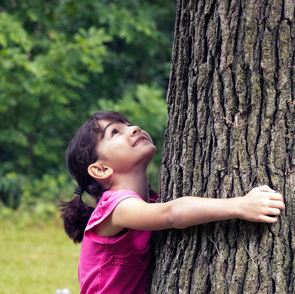 Hugging-tree-square