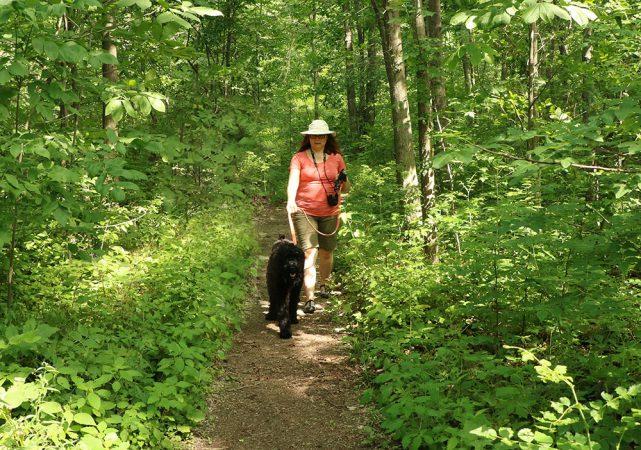 a somen walks her dog on a path