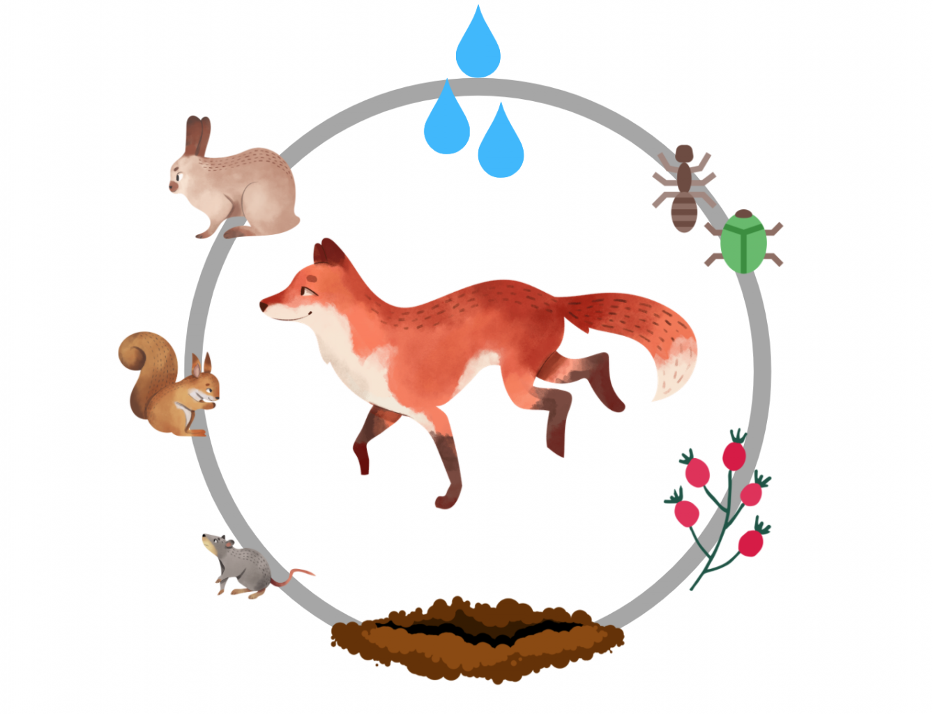 An illustrated fox surrounded by a squirrel, a rabbit, a mouse, insects, berries, water, and a den