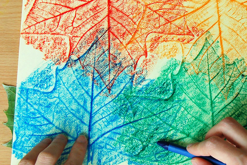 colourful leaf rubbings