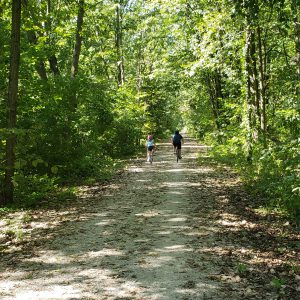 two cyclists ride down a wooded greenway