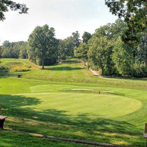 Kingville Golf Club green
