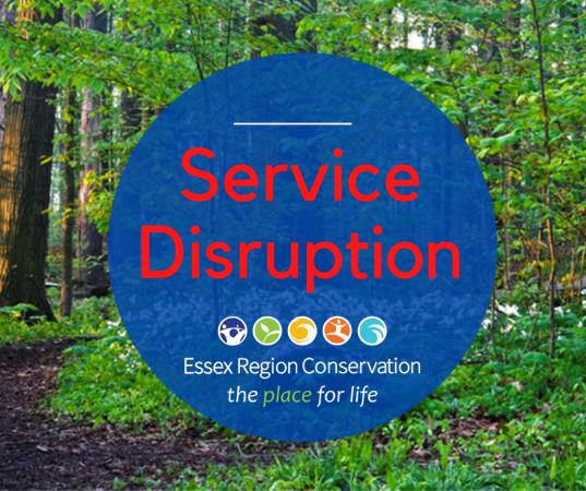 Image: Service Disruption