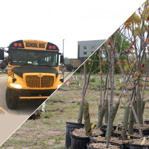 a split image of a bus and a tree planting site